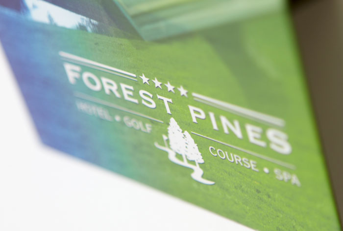 forest_pines_brochure3