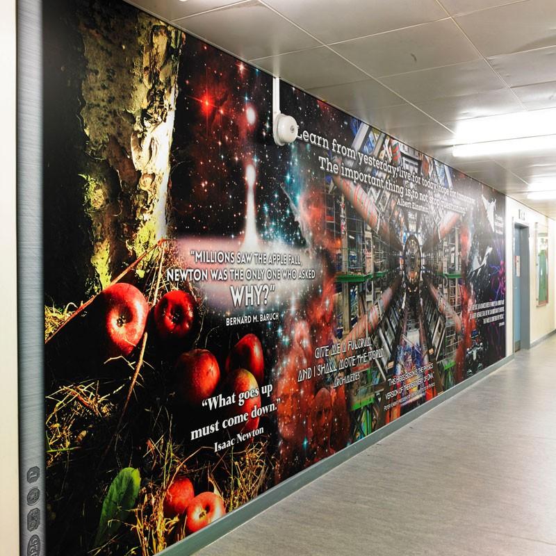 Ecclesfield School Wall Graphics | Blue Strawberry Elephant